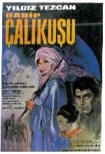 Garibim Çalıkuşu (1966) afişi