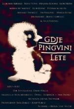 Gdje Pingvini Lete (2008) afişi