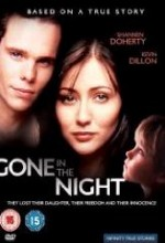Gone in The Night (1996) afişi