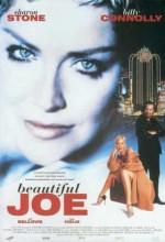 Güzel Joe (2001) afişi