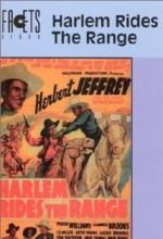 Harlem Rides The Range (1939) afişi