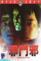 Hex Vs. Witchcraft (1980) afişi