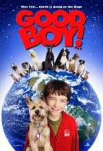 İyi Evlat! (2003) afişi