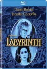 Inside The Labyrinth (1986) afişi