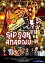 Şipşak Anadolu (2014) afişi