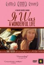 It Was a Wonderful Life (1993) afişi