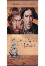 Jamaikada Bir Fırtına (1965) afişi