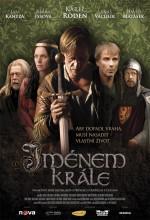 Jmenem Krale (2009) afişi