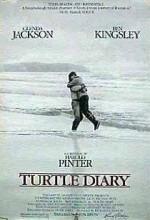 Kaplumbağa Güncesi
