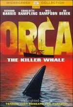 Katil Balina Orca