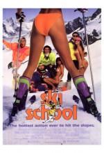 Kayak Okulu (1991) afişi