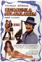 Kurşunla Selamlarım (1971) afişi