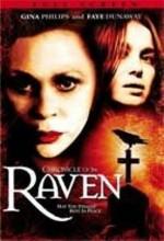 Kuzgun (2004) afişi