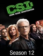 Kanıt Peşinde Sezon 12 (2012) afişi