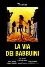 La Via Dei Babbuini (1974) afişi