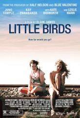 Little Birds (2011) afişi