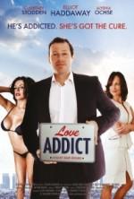 Love Addict (2015) afişi