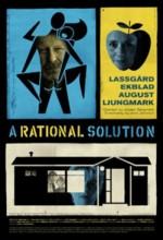 Makul Çözüm (2009) afişi
