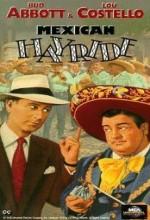 Mexican Hayride (1948) afişi