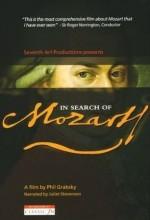 Mozart'ın Izinde (2006) afişi