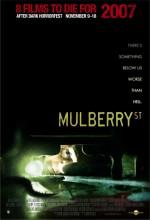Mulberry Sokağı