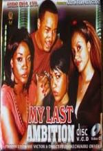 My Last Ambition (2009) afişi