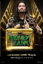 Money in the Bank (2016) afişi