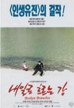 Naeilro Heureuneun Kang (1996) afişi