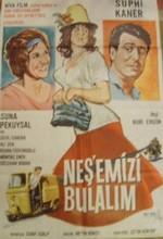Neşemizi Bulalım (1962) afişi