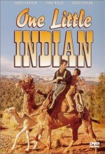 One Little Indian (1973) afişi