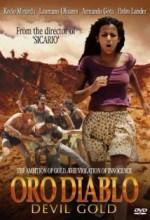 Oro Diablo (2000) afişi