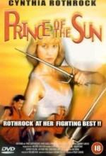 Prince Of The Sun (1990) afişi