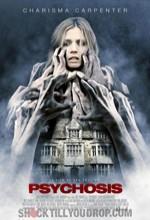 Psikoz (2010) afişi