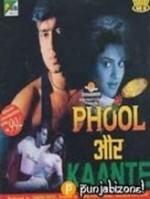 Phool Aur Kaante (1991) afişi