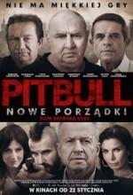 Pitbull. Nowe porzadki (2016) afişi