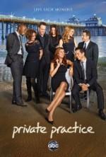 Private Practice Sezon 4 (2010) afişi