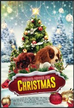 Project: Puppies for Christmas (2017) afişi