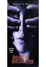 Random Encounter (1998) afişi