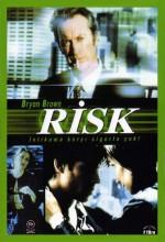 Risk (2000) afişi