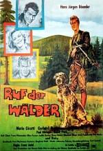 Ruf Der Wälder (1965) afişi