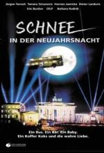 Schnee In Der Neujahrsnacht (1999) afişi