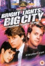Şehrin Parlak Işıkları (1988) afişi