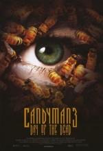 Şeker Adamın Laneti 3 (1999) afişi