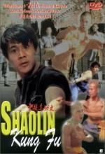 Shaolin Kung Fu (1994) afişi