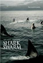 Köpek Balığı Sürüsü (2008) afişi