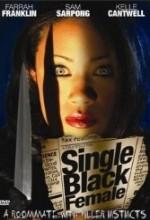 Single Black Female (2009) afişi