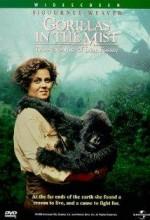 Sisteki Goriller (1988) afişi