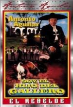 Soy El Hijo Del Gallero (1978) afişi