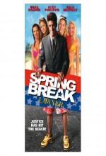 Spring Break Lawyer (2001) afişi