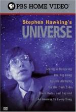 Stephen Hawking's Universe (1997) afişi